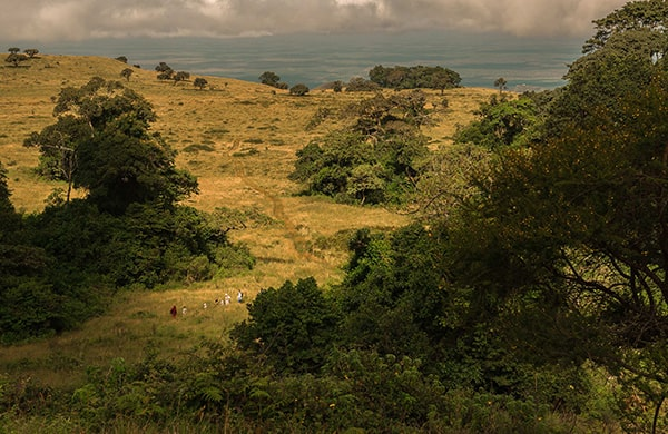 Where is Chyulu Wilderness Camp?